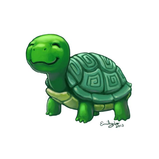 turtle10192013